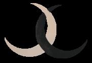 Interlocking_Symbol